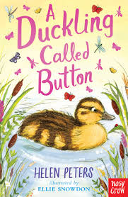 Bookwagon A Duckling Called Button