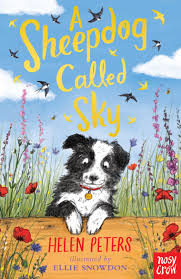 Bookwagon A Sheepdog Called Sky