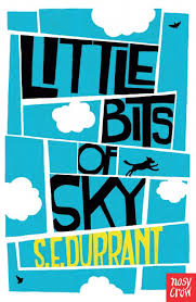 Bookwagon Little Bits of Sky