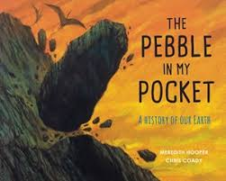 Bookwagon The Pebble in My Pocket