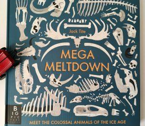 Bookwagon Mega Meltdown