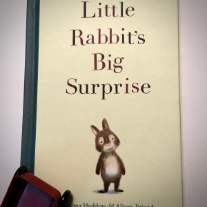 Bookwagon Little Rabbit's Big Surprise