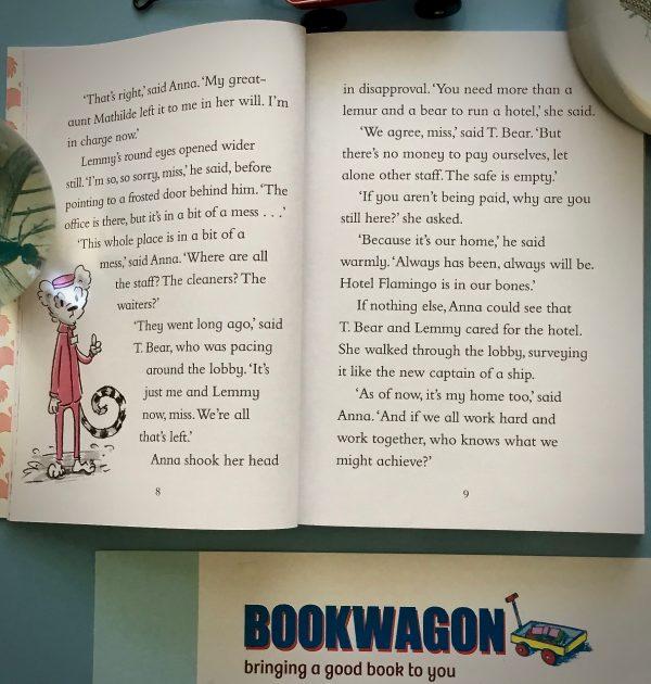 Bookwagon extract Hotel Flamingo