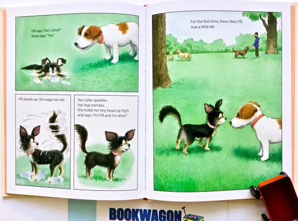 Bookwagon extract from 'Good Rosie!'