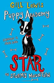 Bookwagon Puppy Academy Star on Stormy Mountain