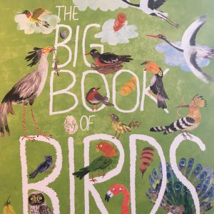 Bookwagon The Big Book of Birds