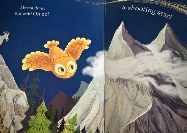 Little Owl's Bedtime (C) Bookwagon