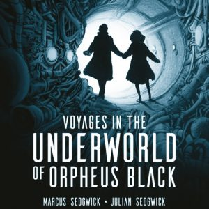 Voyages in the Underworld of Orpheus Black Cover image