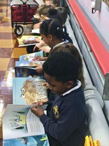 Representation at school (C) Bookwagon
